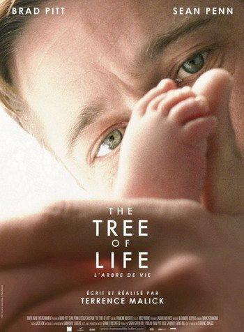 第64届戛纳主竞赛单元资料:《生命之树》