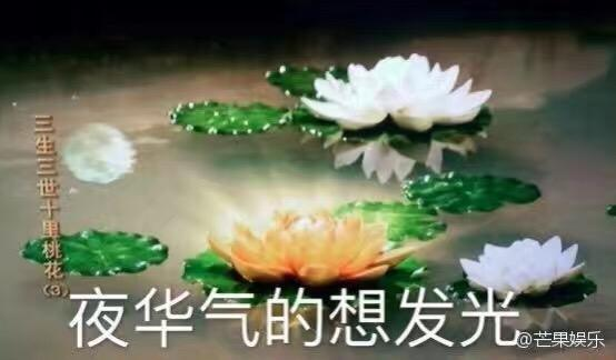 专访赵又廷:演《三生三世》总感觉自己像仙女
