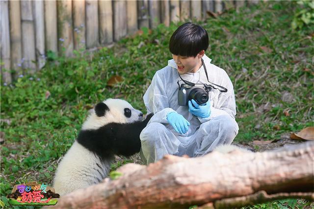 《奇妙的朋友2016》定档 杜海涛:最难搞是动物