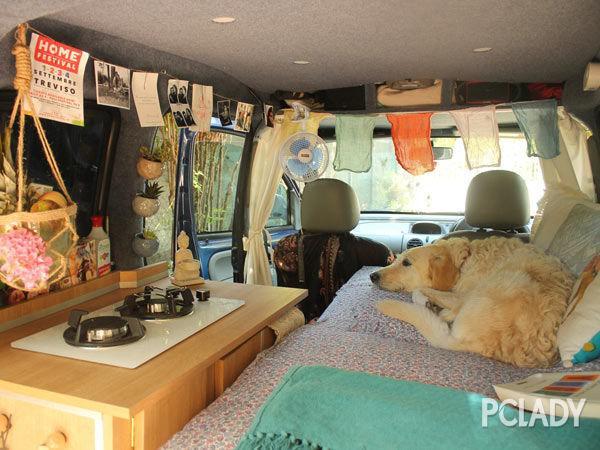面包车变房车 随时带上狗狗去旅行!