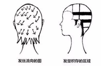 """八公举:给我来个瘦脸针 我也敢剪刘诗诗这款""""空气发尾""""(一不留神范冰冰也剪了……)"""