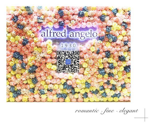alfred angelo礼服浪漫邂逅百位美女