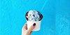 海盐成为新一季网红!除了吃,原来它还有这么神奇的功效!>                    </li>                </ul>                <span class=
