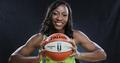 尼日利亚公布女篮世界杯初选名单 WNBA悍将领衔