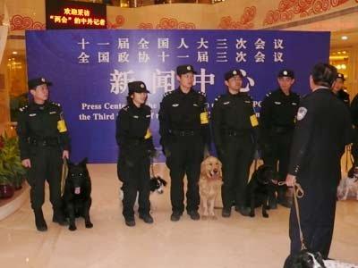 图文:两会安保工作就绪 警犬队在做最后准备