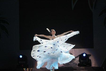 博鳌之夜杨丽萍现场表演