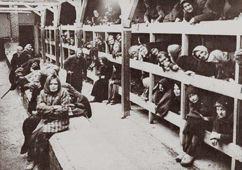 骨瘦如柴的女囚.   一位母亲和她 奥斯维辛集中营是纳粹德国犯下滔图片