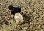 旱灾将成通胀催化剂?