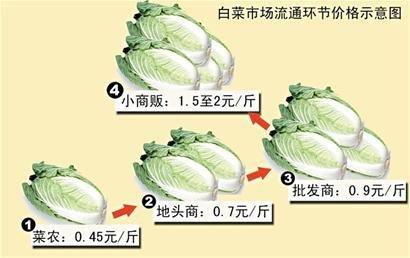 白菜市场流通环节价格示意图(图片来源:青岛新闻网)