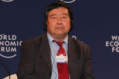 石定寰:中国可再生能源的成本在不断下降