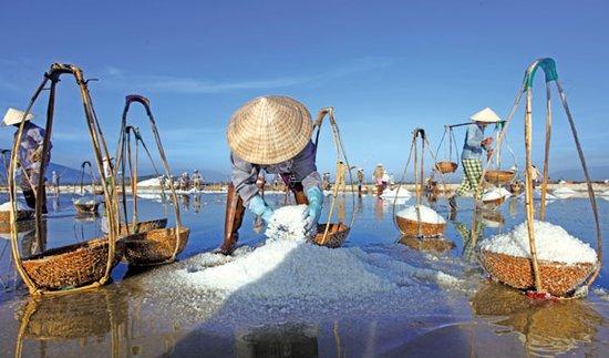某企业优质盐田综合开发项目商业计划书(一)