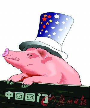 中国加大进口猪肉势头或持续到明年