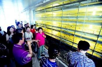 蓬莱经济体制改革委员会同意改制,将示范场产权全部出售给内部职工.