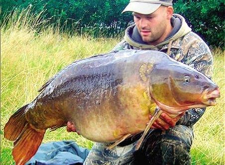 世界最大的鳝鱼_英国最大鲤鱼去世 众粉丝伤心哀悼