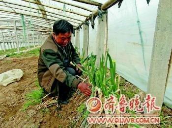 张维迎称国企是中国成长障碍 建议股份赠民众(图)
