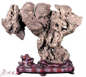 奇石 收藏你的想象