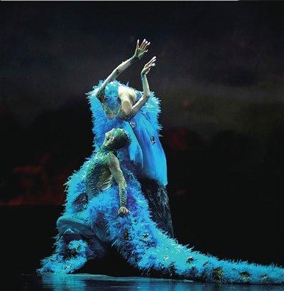 杨丽萍舞蹈家需要阅历