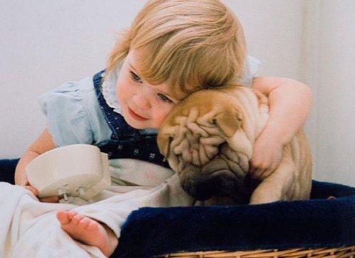 小孩子们喜欢与小动物相伴是儿童特有的天性。他们会把小动物当作亲密的朋友甚至是自己的兄弟姐妹一样看待。同小动物一起嬉戏,向它倾诉心声,并获得安慰,摆脱孤独,可以使孩子们在自己独有的世界里获得安全感