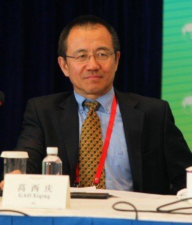 图文:中投副董事长高西庆
