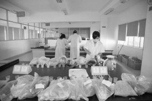 """深圳大运会检测转基因一步到位,让海内外来宾""""吃""""得放心"""