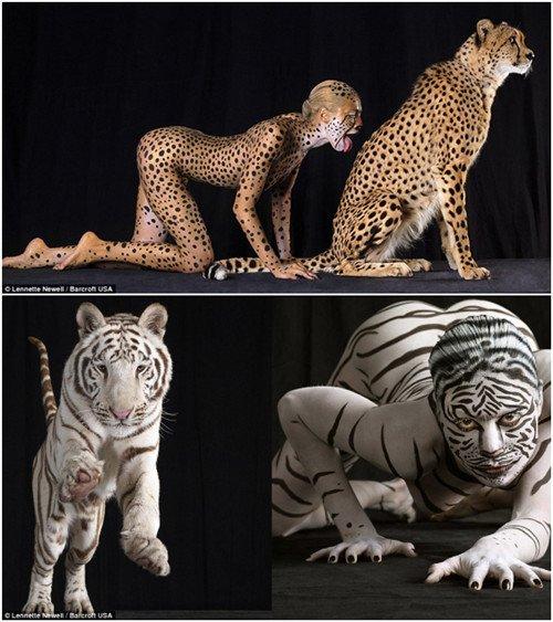 裸体美女彩绘变野兽 艺术摄影效果逼真吸眼球