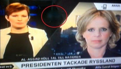 图片v图片中惊现色情片!瑞典电视台闹表情(图)猫的a图片乌龙新闻包图片