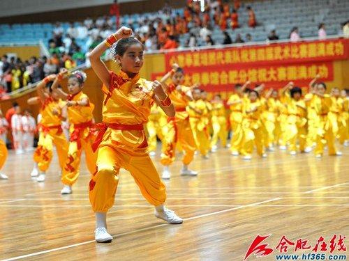 合肥市第五届传统武术比赛5月21日开幕