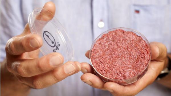 人造肉五年后可大规模上市 你敢吃吗?
