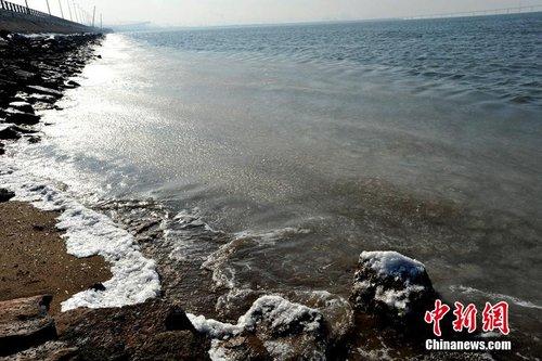 2013年12月27日,青岛,环湾路西侧的胶州湾沿岸海面结冰.