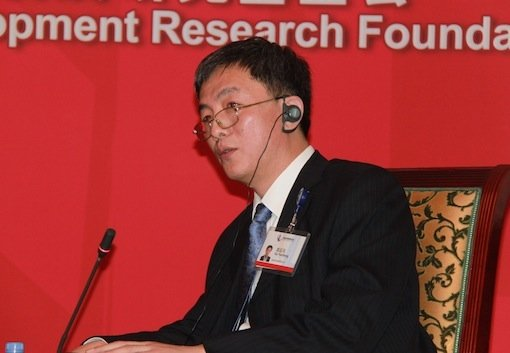 图文:国务院发展研究中心长葛延风