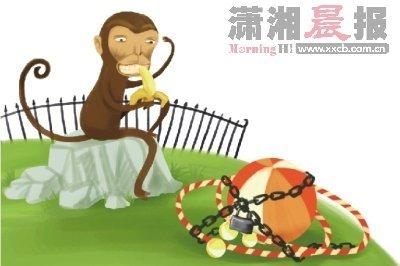 """海狮每天也要顶数十次皮球……武汉动物园在黄金周的""""超负荷表演""""只是"""