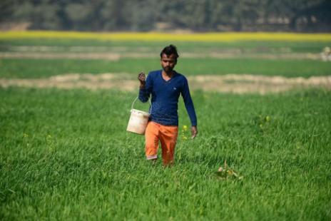 印度农民可能要发财了 靠的是农业科技初创公