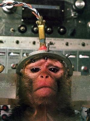最残忍的动物实验旧照