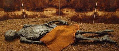 埃及法老王拉美西斯二世木乃伊   西伯利亚冰少女拥有精致纹身   秘鲁图片