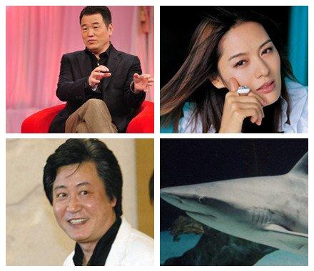 赵宝刚拍《婚姻保卫战》吓死黄怒波两条鲨鱼