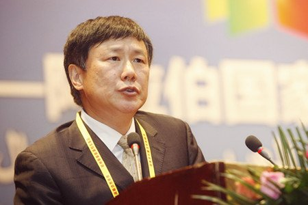 张燕生:通过金融领域开放促进中阿合作