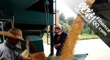 农产品全线上涨