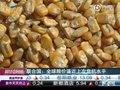 视频:联合国称全球粮价已逼近上次危机水平