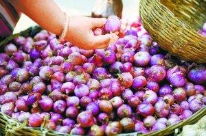印度洋葱价格飞涨