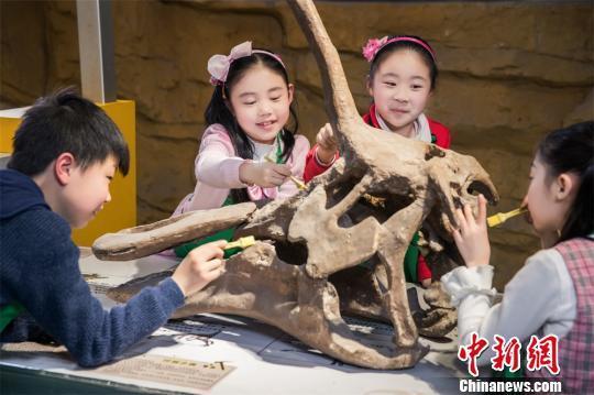 """海外追缴国宝级恐龙化石特展 让恐龙""""活""""起来"""