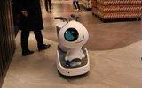 超市聘请机器人当导购员