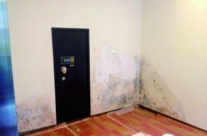 小图:有业主家中墙体霉变起皮。