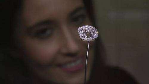 法国王室传奇钻石拍出千万欧元 所有君主都戴过
