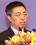 中国商务部国际贸易谈判副代表张向晨