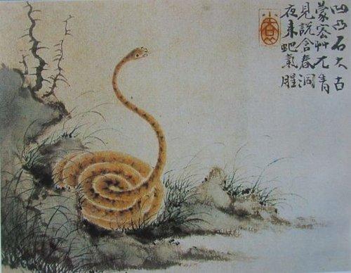画蛇水彩画作品