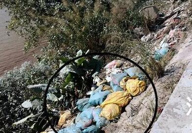 福州大樟溪边现数十袋死鸭