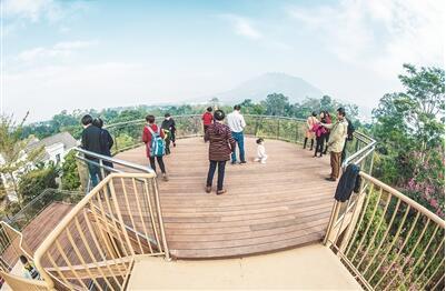 漳州圆山林下生态园今面向市民免费开放