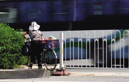 福峡路口 5分钟内8行人横穿马路(图)