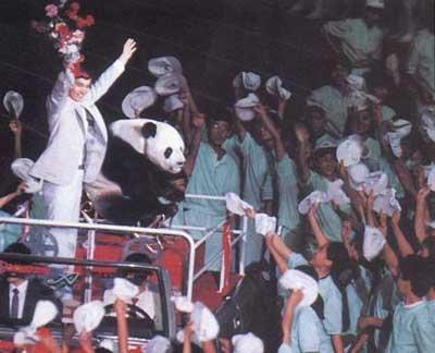 1990北京亚运熊猫盼盼:家喻户晓的和平形象