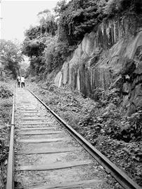 """厦门岛内老铁路建新""""城市走廊""""征市民意见"""